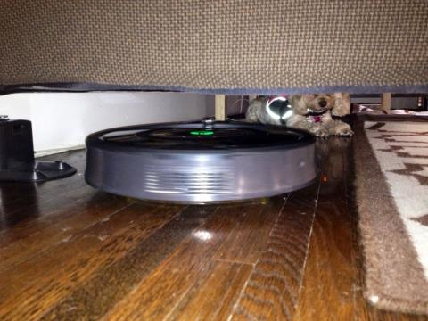 3 Advantages of Using a Robot Vacuum Picture