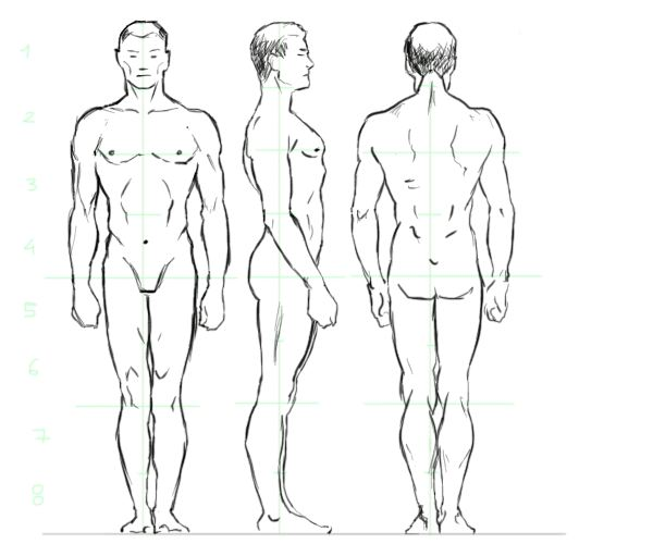 Male body drawing hot girls wallpaper for Easy body drawings