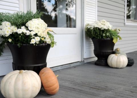 Fine Gardening- An Excellent Gardening Resource