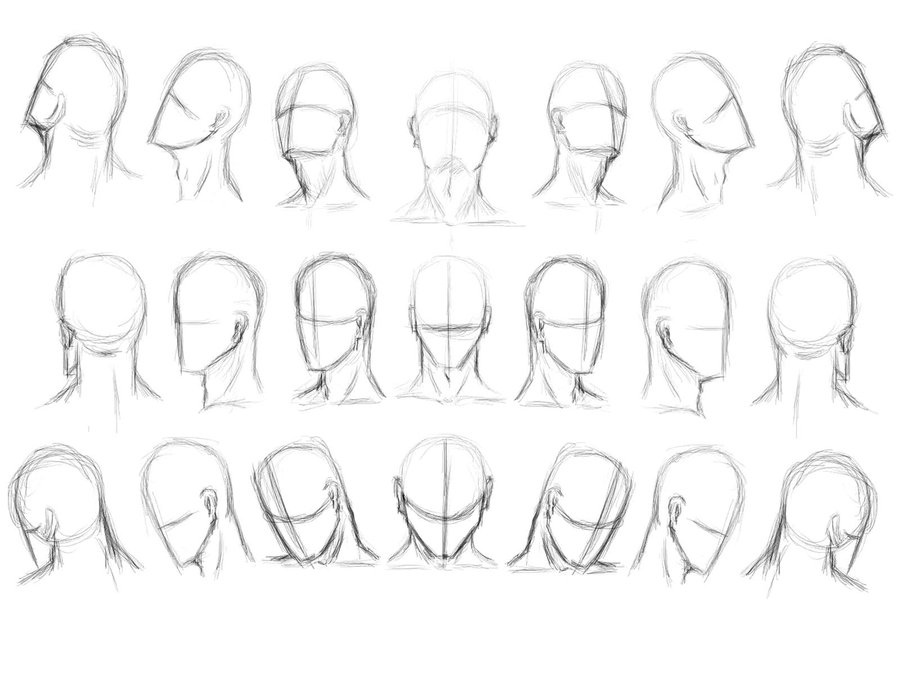 Marvelous head to tail method vectors pics