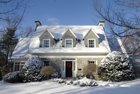 How to Keep Your Yard in Good Shape During the Winter Picture