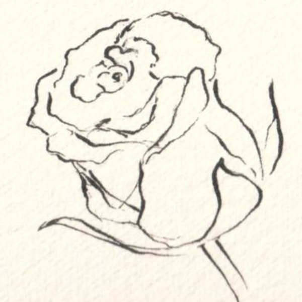 The art of drawing flowers for How to draw a hard flower