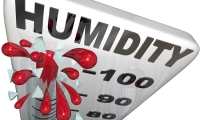 The Effects of High Indoor Humidity