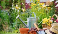 Time-Saving Gardening Tools and Tricks