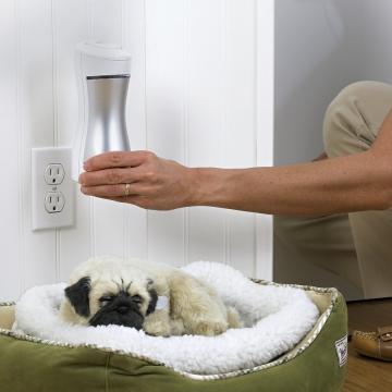 Are Plug In Air Purifiers Worth the Money Picture