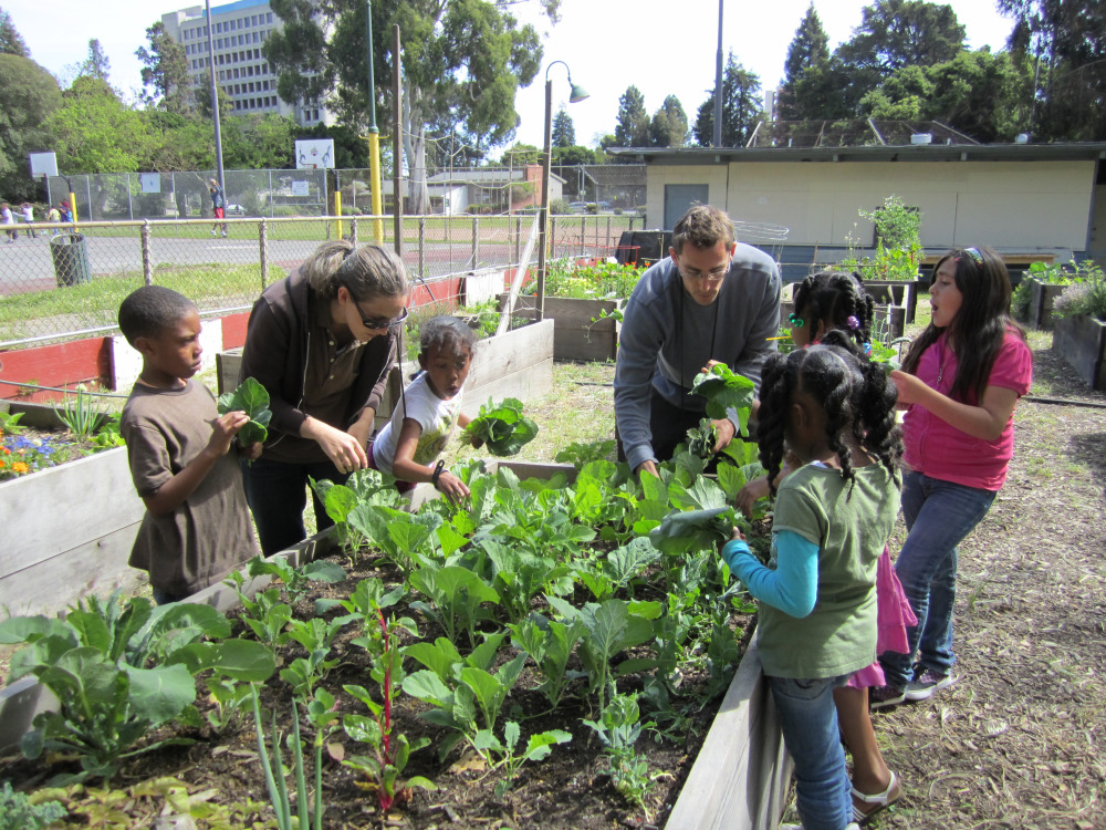 How Community Gardens Can Improve Society | BlogLet.com