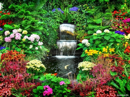 Keeping Your Gardens Alive During Drought