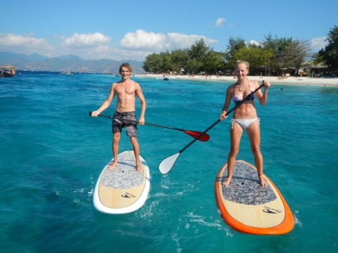 Standup Paddleboarding Basics Picture