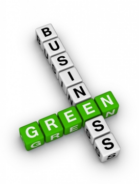 Sustainability practices for businesses - green initiatives to consider2