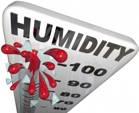 The Effects of High Indoor Humidity Picture