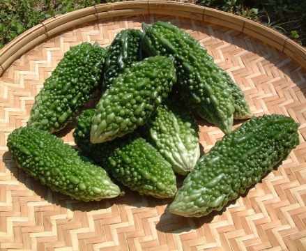 Tips for Growing Asian Vegetables