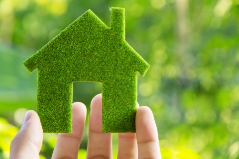 Tips for Making Your Home Eco-Friendly Picture