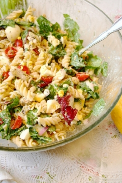two-of-the-best-chicken-pasta-recipes-2